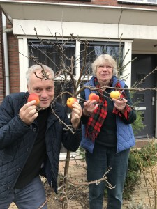 In 2015 heeft Maria van de Looverbosch voor Arthur Vierboom zijn versteende voortuin veranderd in een tuin die overeenkomt met zijn familienaam: Vierboom. Een van de bomen is een appelboompje dat het afgelopen jaar talrijke appels opgeleverd heeft.